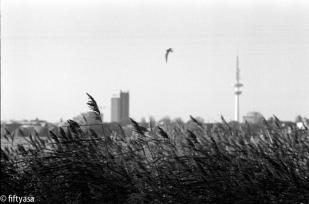 Leica M6, Agfa APX 100