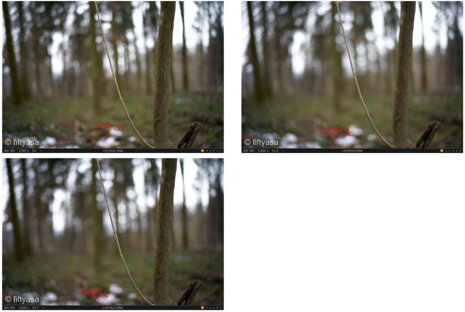 25 bokeh max aperture.jpg